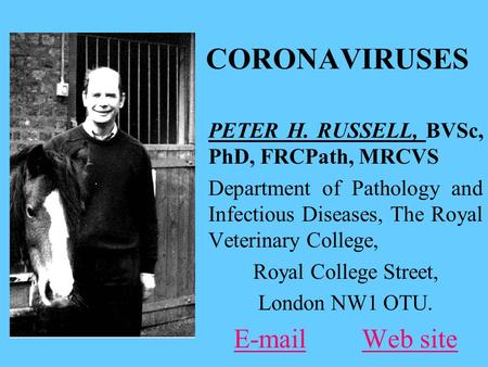 CORONAVIRUSES PETER H. RUSSELL, BVSc, PhD, FRCPath, MRCVS Department of Pathology and Infectious Diseases, The Royal Veterinary College, Royal College.