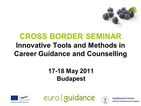 CROSS BORDER SEMINAR Innovative Tools and Methods in Career Guidance and Counselling 17-18 May 2011 Budapest.