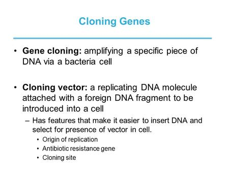 Cloning Genes Gene cloning: amplifying a specific piece of DNA via a bacteria cell Cloning vector: a replicating DNA molecule attached with a foreign DNA.