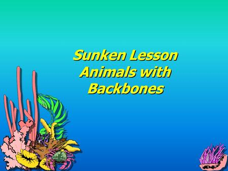 Sunken Lesson Animals with Backbones Fish Live in water Most have scales and fins Use their fins to move through the water Use gills to breathe Live.