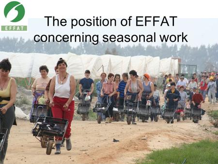 The position of EFFAT concerning seasonal work. Sectoral seasonal work Agriculture 6.8 Million workers –4 Million of them are seasonal workers Tourism.