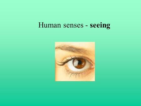 Human senses - seeing. Optic disc (blind spot) evidence A Hold picture in stretched arm in front of your eyes. Close your left eye and look at the left.