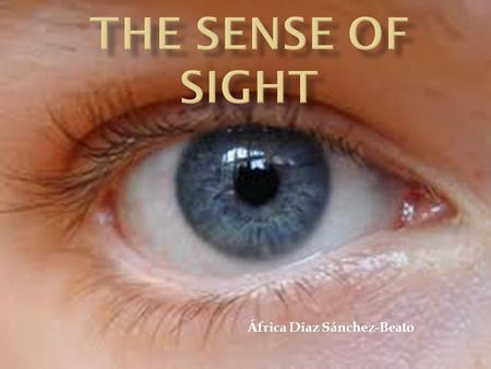 África Díaz Sánchez-Beato.  Introduction  The eye and the vision  Parts of the eye  How the eye works  Video.
