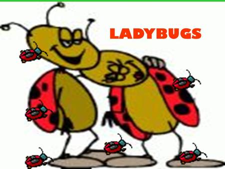 LADYBUGS.  What do ladybugs have in common with wolves? Read the next passage to find out.