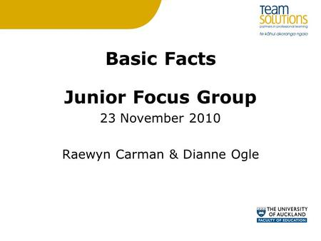Basic Facts Junior Focus Group 23 November 2010 Raewyn Carman & Dianne Ogle.