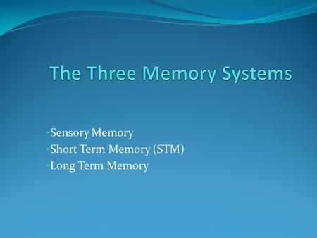 Sensory Memory Short Term Memory (STM) Long Term Memory.