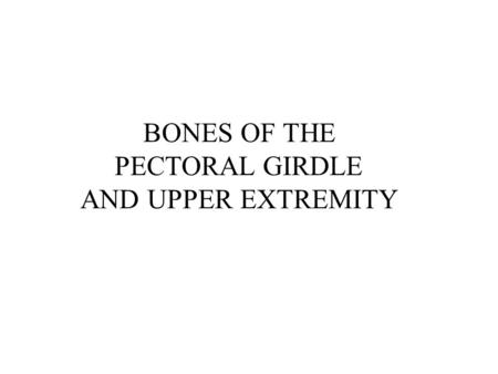 BONES OF THE PECTORAL GIRDLE AND UPPER EXTREMITY.