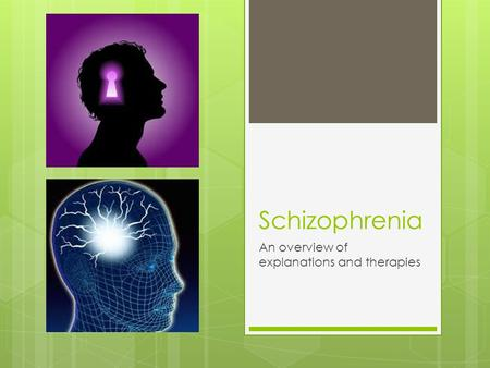 Schizophrenia An overview of explanations and therapies.