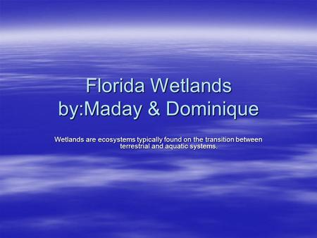 Florida Wetlands by:Maday & Dominique Wetlands are ecosystems typically found on the transition between terrestrial and aquatic systems.