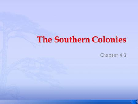 Chapter 4.3.  Why did the colony of New Netherlands become the colony of New York?  Why did New Jersey separate from New York  How was Pennsylvania.