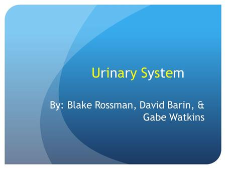 Urinary SystemUrinary System By: Blake Rossman, David Barin, & Gabe Watkins.