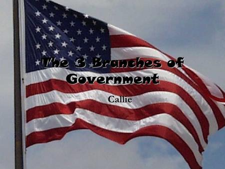 The 3 Branches of Government Callie. Enforces Laws.