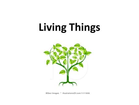 Living Things. Characteristics 1.Have cells 2.Sense and Respond 3.Reproduce 4.Have DNA 5.Use Energy 6.Grow and Develop.