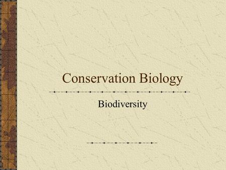 Conservation Biology Biodiversity. Trophic Levels Primary Producers Primary Consumers Secondary Consumers Tertiary Consumers Quaternary Consumers.