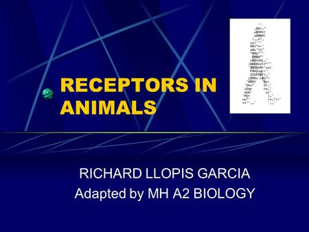 RECEPTORS IN ANIMALS RICHARD LLOPIS GARCIA Adapted by MH A2 BIOLOGY.