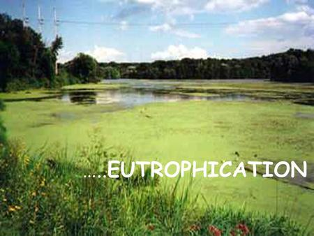 …..EUTROPHICATION. When lakes, streams and estuaries are over fertilized, excessive production of aquatic organic matter can become a water quality problem.