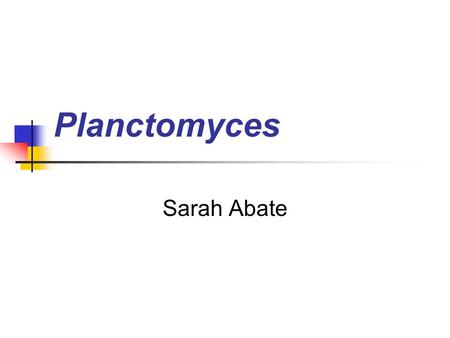 Planctomyces Sarah Abate. History First described by Gimesi in 1924 in Budapest, Hungar. Mistakenly identified as planctonic fungus. Schlesner and Stackebrandt.