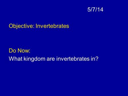 5/7/14 Objective: Invertebrates Do Now: What kingdom are invertebrates in?