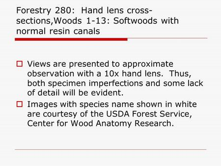 Forestry 280: Hand lens cross- sections,Woods 1-13: Softwoods with normal resin canals  Views are presented to approximate observation with a 10x hand.