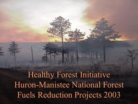 Healthy Forest Initiative Huron-Manistee National Forest Fuels Reduction Projects 2003.