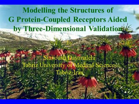 By Siavoush Dastmalchi Tabriz University of Medical Sciences Tabriz-Iran Modelling the Structures of G Protein-Coupled Receptors Aided by Three-Dimensional.