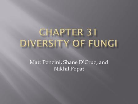 Matt Ponzini, Shane D'Cruz, and Nikhil Popat.  Diversity of Fungi  100,000+ species of Fungi are known (Estimated to be 1.5 Million worldwide)  Fungi.