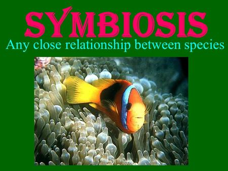 Symbiosis Any close relationship between species.