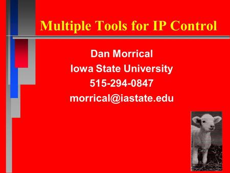 Multiple Tools for IP Control Dan Morrical Iowa State University 515-294-0847
