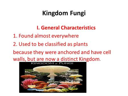 Kingdom Fungi I. General Characteristics 1. Found almost everywhere 2. Used to be classified as plants because they were anchored and have cell walls,