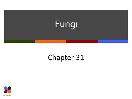 Fungi Chapter 31. Slide 2 of 15 Fungal Commonalities  Heterotrophic & Eukaryotic  Multicellular  Important in the ecosystem as decomposers  Cell walls.