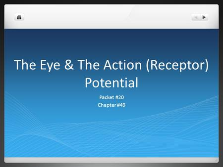 The Eye & The Action (Receptor) Potential Packet #20 Chapter #49.