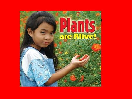 Plants are alive. Plants can move but very slowly.