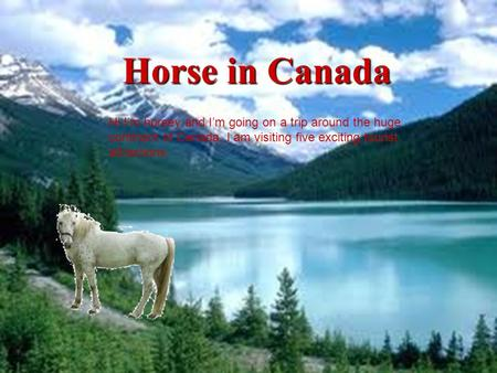 Horse in Canada Hi I'm horsey and I'm going on a trip around the huge continent of Canada. I am visiting five exciting tourist attractions.