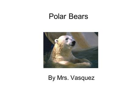 Polar Bears By Mrs. Vasquez. Table of Contents Chapter 1 What Do Polar Bears Look Like?1 Chapter 2 What Do Polar Bears Eat?2 Chapter 3 Where Do Polar.