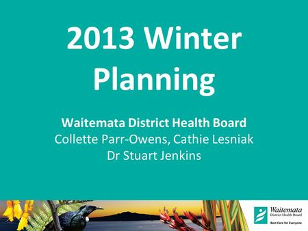 2013 Winter Planning Waitemata District Health Board Collette Parr-Owens, Cathie Lesniak Dr Stuart Jenkins.