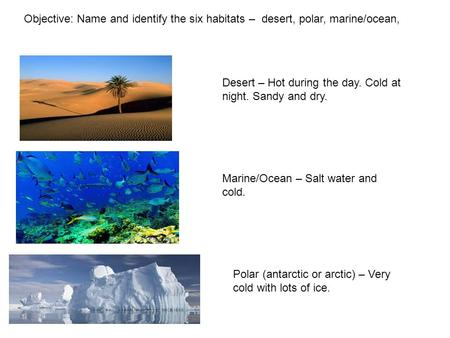 Objective: Name and identify the six habitats – desert, polar, marine/ocean, Desert – Hot during the day. Cold at night. Sandy and dry. Marine/Ocean –