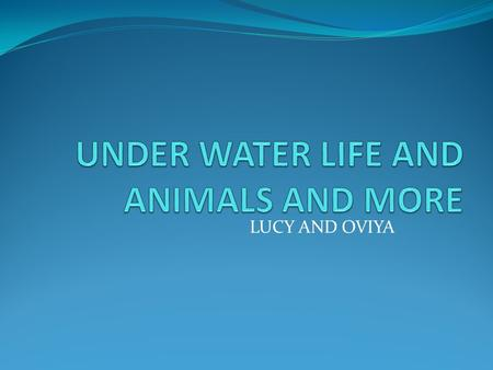 LUCY AND OVIYA. TABLE OF CONTENTS Mammals Page 1 Amazing creatures Page 2 Sea turtles Page 3 Plants Page 4 Index Page 5 Glossary Page 6.