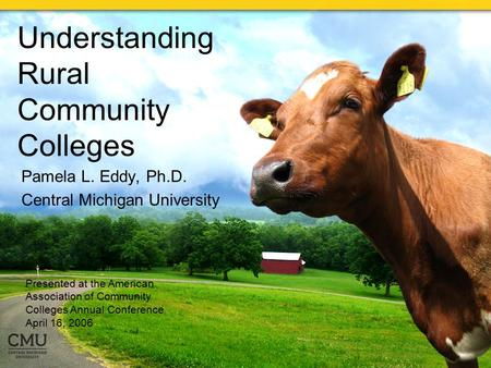 Understanding Rural Community Colleges Pamela L. Eddy, Ph.D. Central Michigan University Presented at the American Association of Community Colleges Annual.
