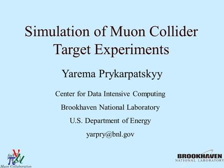 Simulation of Muon Collider Target Experiments Yarema Prykarpatskyy Center for Data Intensive Computing Brookhaven National Laboratory U.S. Department.