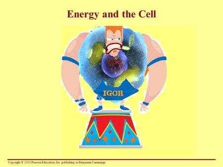 Copyright © 2003 Pearson Education, Inc. publishing as Benjamin Cummings Energy and the Cell.