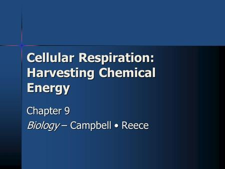Cellular Respiration: Harvesting Chemical Energy Chapter 9 Biology – Campbell Reece.