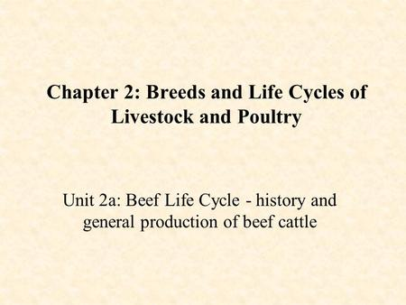 Chapter 2: Breeds and Life Cycles of Livestock and Poultry Unit 2a: Beef Life Cycle - history and general production of beef cattle.