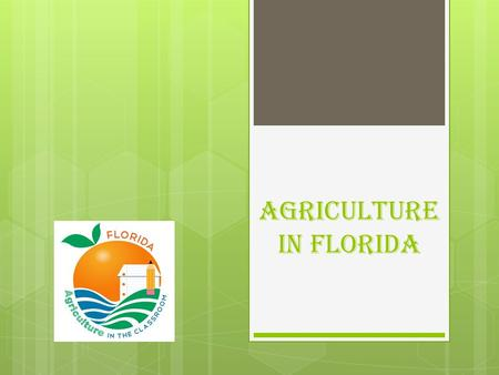 Agriculture In Florida.  13 th Ranked state in overall agricultural production.  1 st Ranked state in citrus production.  2 nd Ranked state in production.