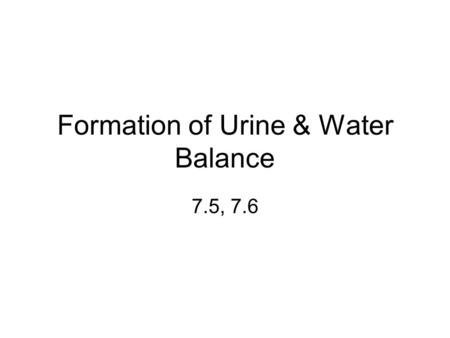 Formation of Urine & Water Balance 7.5, 7.6. First, some review…