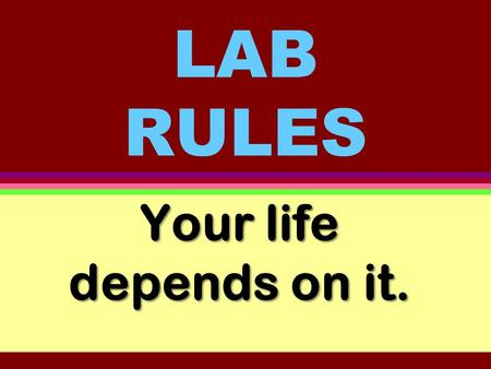 LAB RULES Your life depends on it. Rule # 1 Wear safety goggles at all times.