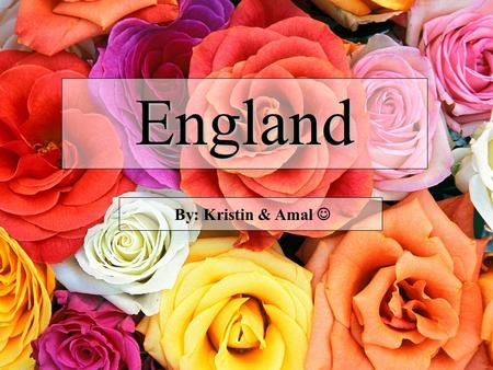 England By: Kristin & Amal Autumn Phillips Peter Phillips Catherine (Duchess of Cambridge) Prince William Mike Tindal Zara Phillips Viscount Severn Lady.