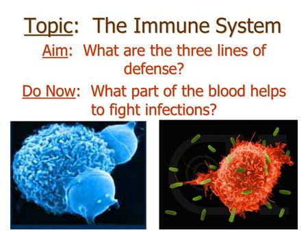 Topic: The Immune System Aim: What are the three lines of defense? Do Now: What part of the blood helps to fight infections?