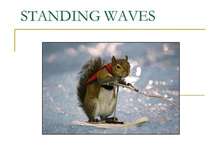 STANDING WAVES. Standing Waves - appear to be 'standing' still in their left to right motion - in constant position.