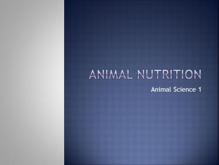 Animal Science 1.  Major groups of nutrients  Carbohydrates  Fats and Oils  Proteins  Vitamins  Minerals  Water.