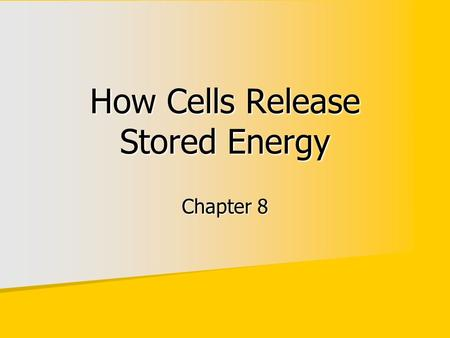 How Cells Release Stored Energy Chapter 8. Photosynthesizers get energy from the sun Photosynthesizers get energy from the sun Animals get energy second-